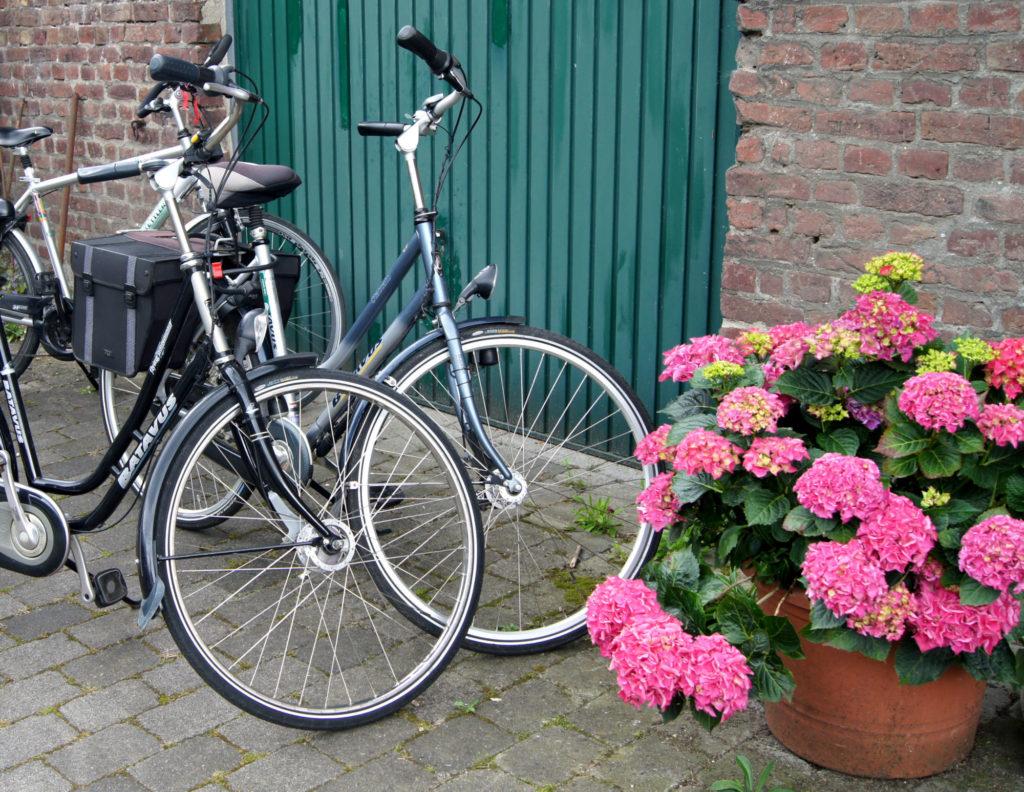 Mit dem Fahrrad zu alten Höfen