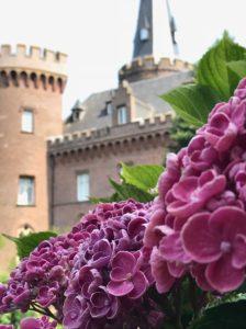 Hortensienwochenende Schloss Moyland_2