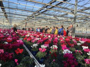 Führung durch den Gartenbaubetrieb Topfpflanzen Ripkens