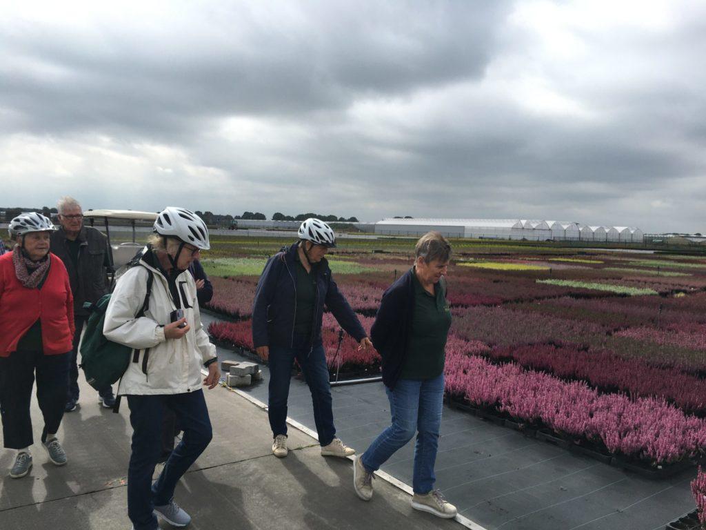 Eine Fahrrad-Gruppe besichtigt den Gartenbaubetrieb Futura Flower.